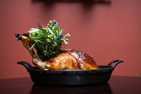 nomad-chicken