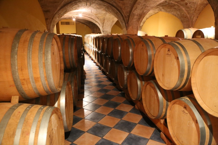 Wine Celler in Burgundy